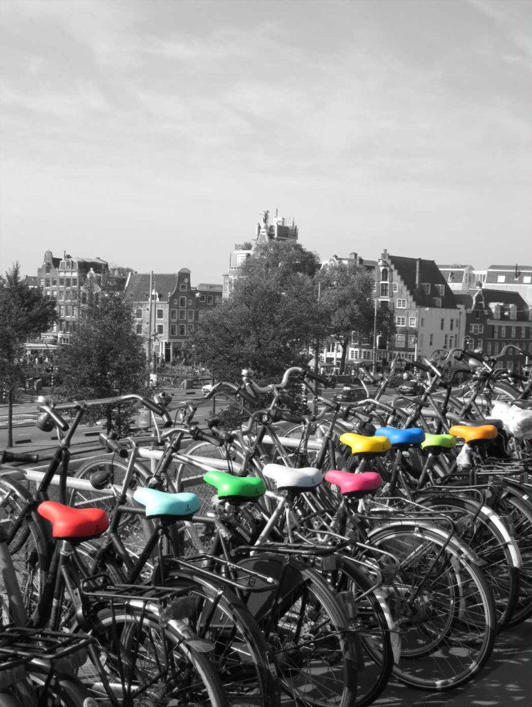 Heer-Zadel-fietszadels-op-een-rij